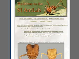 SI AntLab: Smithsonian Ant Type Specimen Database