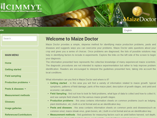 Doctor Maiz (Maize Doctor)