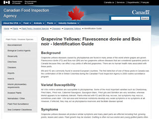 Grapevine Yellows: Flavescence dorée and Bois noir - Identification Guide