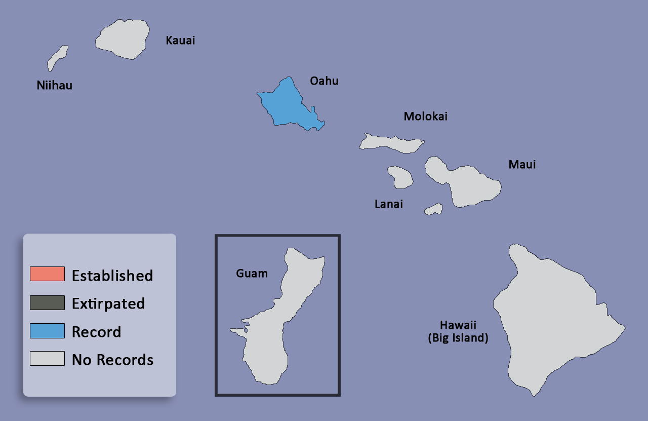 distribution map for <em>Anomala cuprea</em>