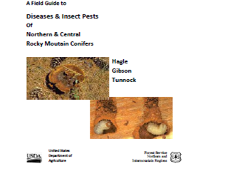 A Field Guide to Diseases & Insect Pests of Northern & Central Rocky Mountain Conifers