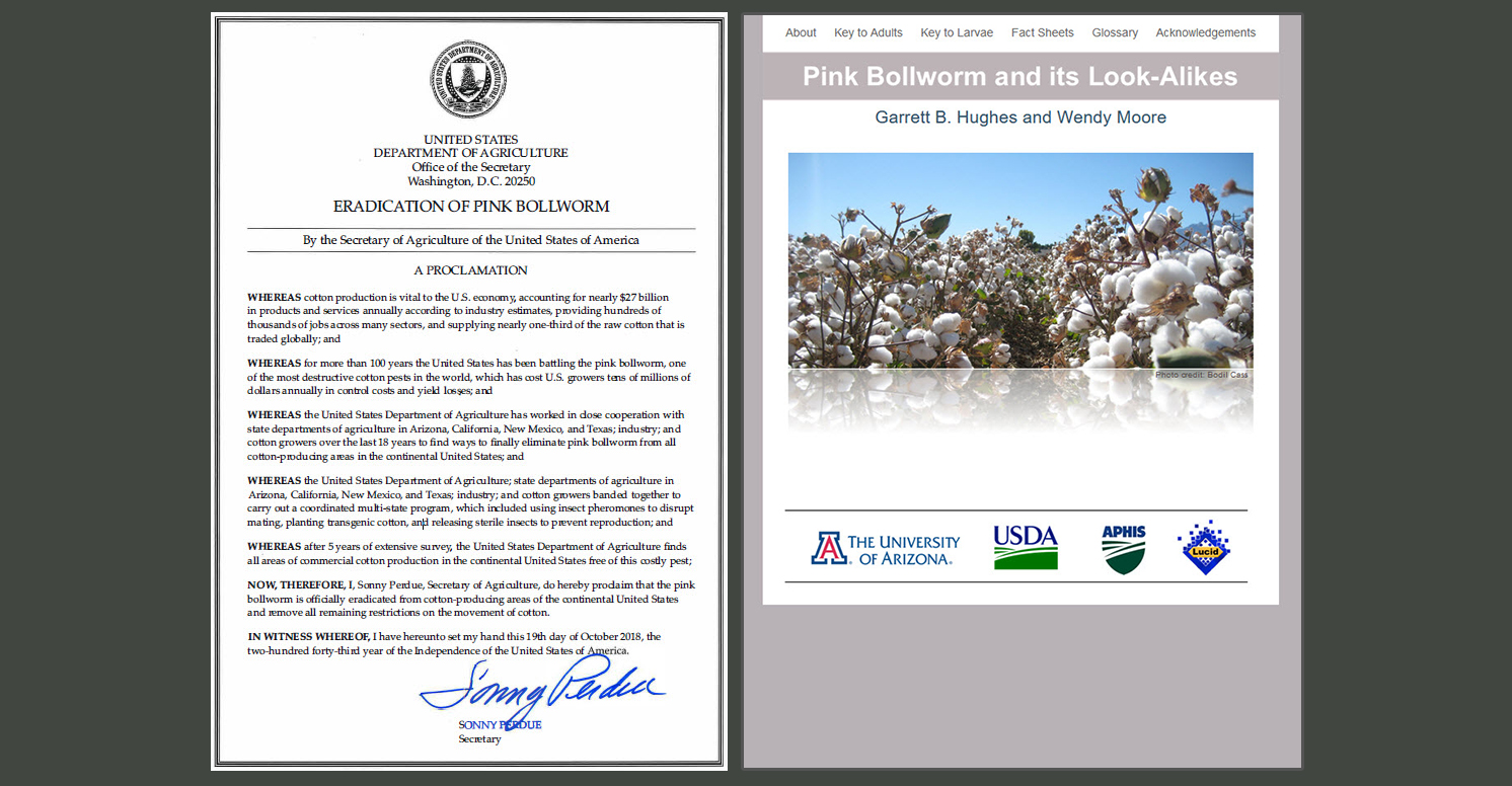 Secretary's proclamation (left) and home page of ITP's Pink bollworm tool (right)